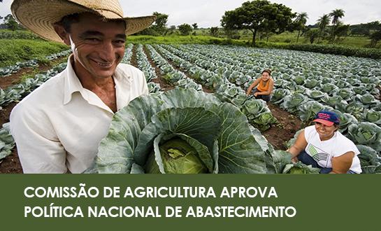 Comissão de Agricultura aprova Política Nacional de Abastecimento